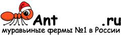 Муравьиные фермы AntFarms.ru - Курган